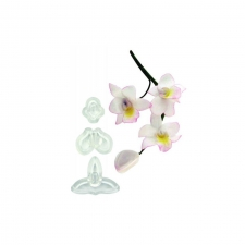 Singapore Orchid (Set of 3) Small
