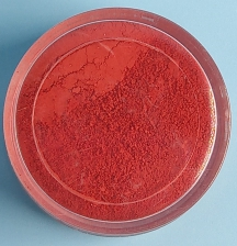 Powder Colour Xmas Red